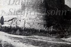 26 Cetatea Soroca - vedere din exterior (11)