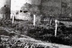 26 Cetatea Soroca - vedere din exterior (14)