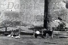 26 Cetatea Soroca - vedere din exterior (7)