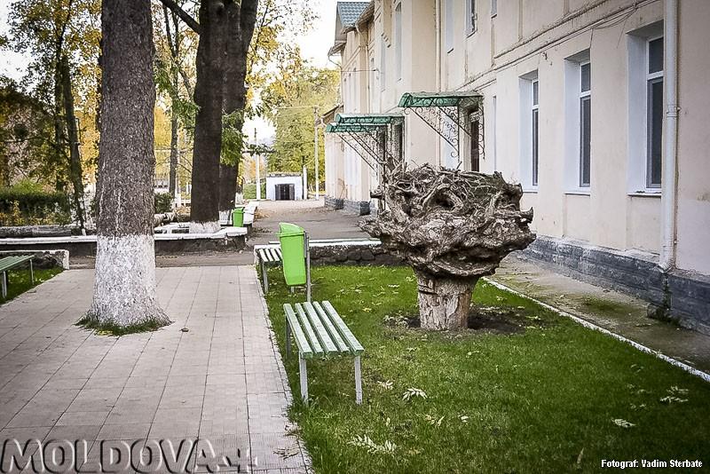 Spitalul Raional Soroca – exemplu de curăţenie pentru oricine