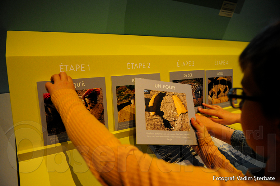 Elevii învață curiozități despre sare la Historial de la Vendée